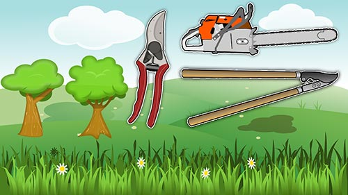 overview of best tree trimming tools for cutting tree branches